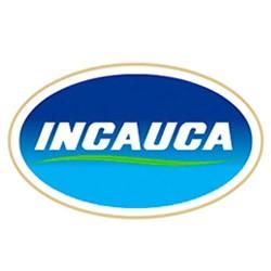 INCAUCA S A S